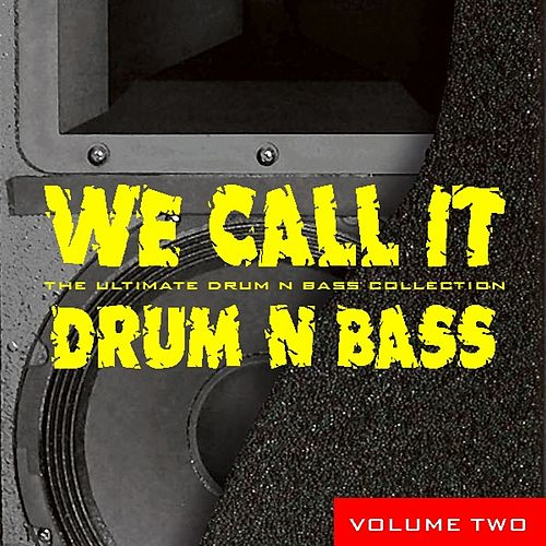 We Call It Drum 'N' Bass, Vol.2 by Various Artists