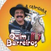 A Cabritinha by Quim Barreiros