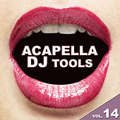 Acapella DJ Tools, Vol. 14 by Various Artists