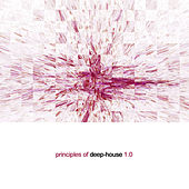 Principles of Deep House 1.0 by Various Artists