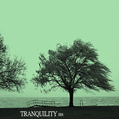 Tranquility 004 by Various Artists