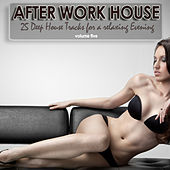 After Work House, Vol. 5 - 25 Deep House Tracks For A Relaxing Evening by Various Artists