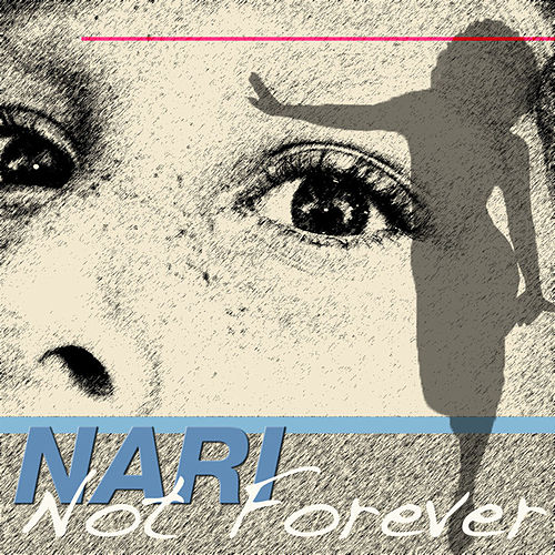 Not Forever by Nari