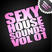 Sexy House Sounds Vol 1 (Mixed By Swing & Shuffle) by Various Artists