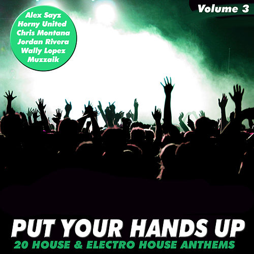 Put Your Hands Up Vol. 3 - 20 House & Electro Anthems by Various Artists
