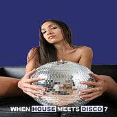 When House Meets Disco, Vol. 7 by Various Artists