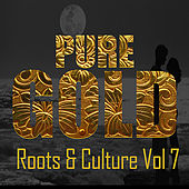Pure Gold Roots & Culture Vol 7 by Various Artists