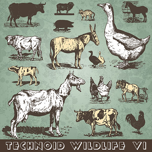 Technoid Wildlife VI by Various Artists