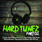Hard Tunez Part 01 by Various Artists