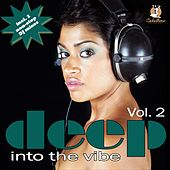 Deep Into The Vibe Vol. 2 by Various Artists