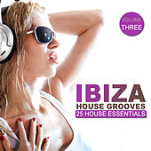 Ibiza House Grooves Vol. 3 by Various Artists