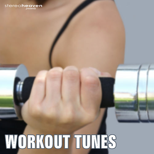 Workout Tunes by Various Artists