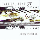 Burn Process by Tactical Sekt