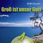 Groß ist unser Gott 1 by Various Artists