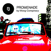 Promenade by Moog Conspiracy