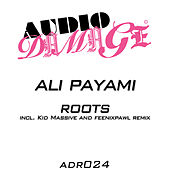 Roots by Ali Payami