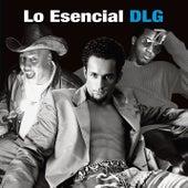 Lo Esencial by DLG