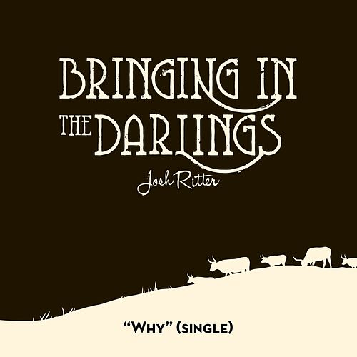 Why - Single by Josh Ritter