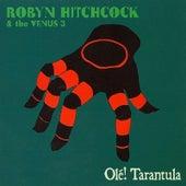 Ole! Tarantula by Robyn Hitchcock