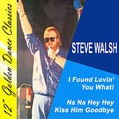 I Found Lovin' You What! by Steve Walsh