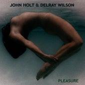 Pleasure by John Holt