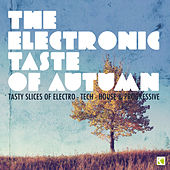 The Electronic Taste of Autumn - Tasty Slices of Electro-Tech-House & Progressive by Various Artists