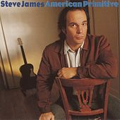 American Primitive by Steve James