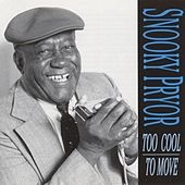 Too Cool To Move by Snooky Pryor