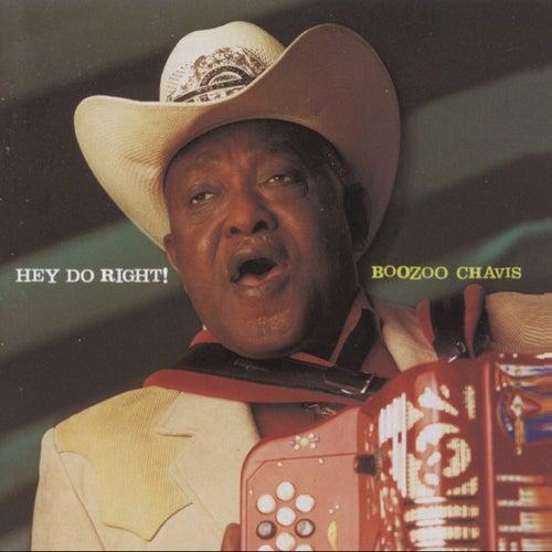 Hey Do Right by Boozoo Chavis