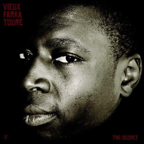 The Secret by Vieux Farka Touré