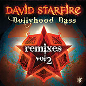 Bollyhood Bass Remixes Vol. 2 by David Starfire