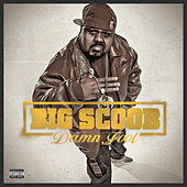 Damn Fool by Big Scoob