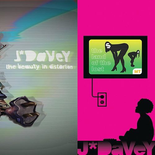 The Beauty In Distortion by J*Davey