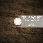 Nebrasca - Single by TELEPORT