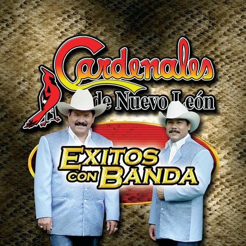 Exitos Con Banda by Cardenales De Nuevo León