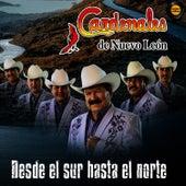 Desde El Sur Hasta El Norte by Cardenales De Nuevo León