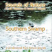 Southern Swamp by Suzanne Doucet & Chuck Plaisance