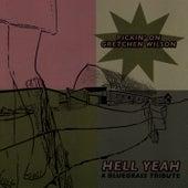 Hell Yeah: Pickin' On Gretchen Wilson by Pickin' On