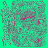 Torrential Zen by Various Artists