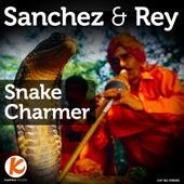 Snake Charmer by Sanchez