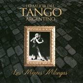 Lo Mejor del Tango Argentino: Las Mejores Milongas by Various Artists