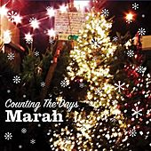 Counting The Days EP by Marah