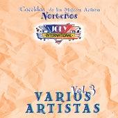 Corridos de los Mejores Artistas Norteños, Vol. 3 by Various Artists