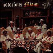 Notorious by Miami