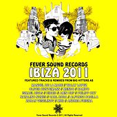 Ibiza 2011 Compilation - Fever Sound Records Selected By Amin Orf by Various Artists