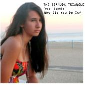 Why Did You Do It? (feat. Sophia) by Bermuda Triangle