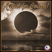 A Wish For Country Vol 1 by Various Artists