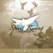 Spirit Rising Vol. 2 by Various Artists