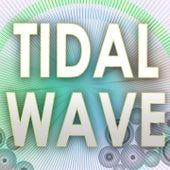 Tidal Wave by Big Hits 2012
