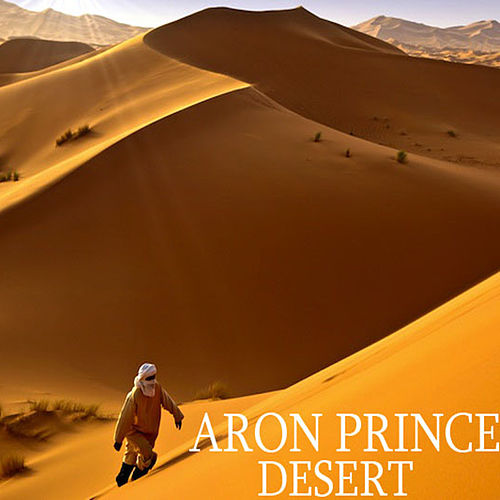 Desert by Aron Prince